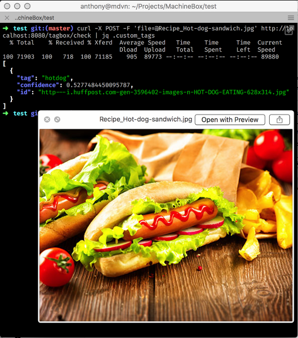 machine learning hotdog detection, detect objects automatically by learning the software to do so